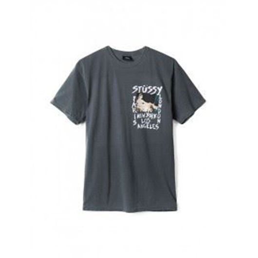 Picture of WT Gallery Pig Dyed Tee Black